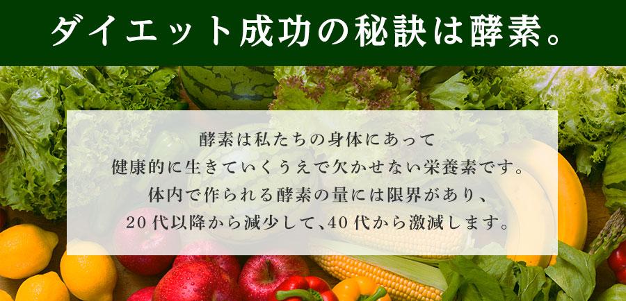 生酵素222種類の植物発酵エキス